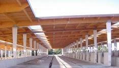 Centro de inseminación de Cenero