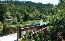 Puente en Solloviu